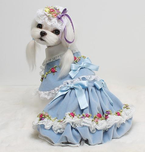 Одежда для собак с доставкой по Москве и области, купить одежду для ... 62b879a66c9